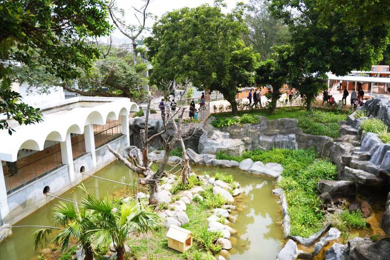新竹昆蟲館前方眺望台的景色