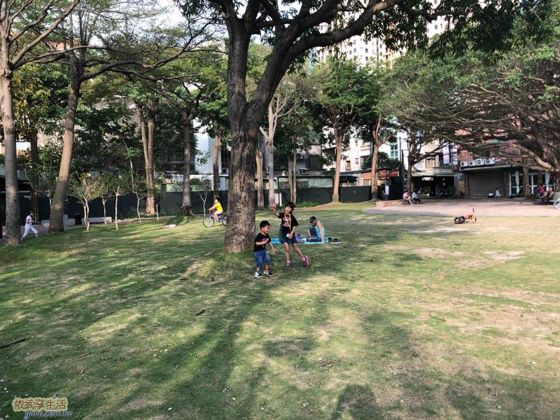 長和公園大草皮