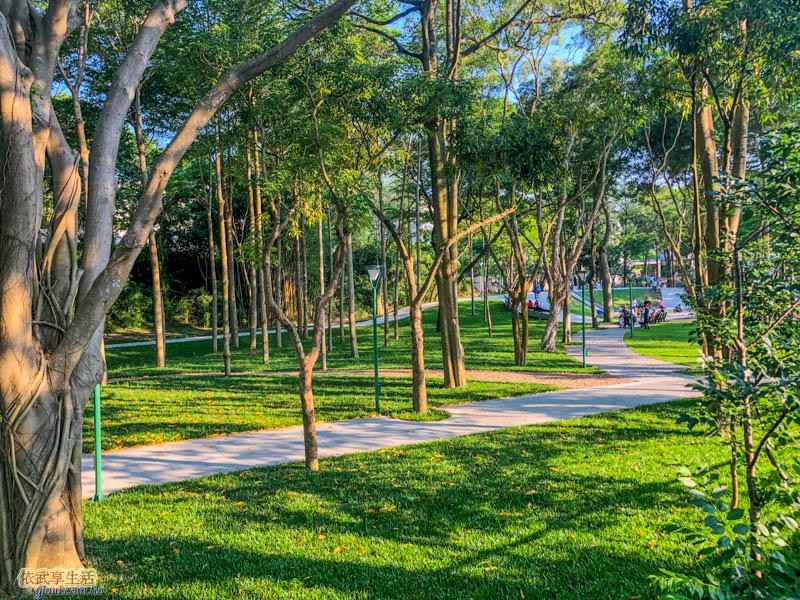 新竹明湖公園草地