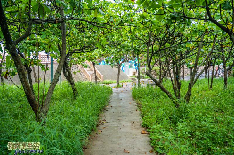 香山濕地賞蟹步道綠色小徑
