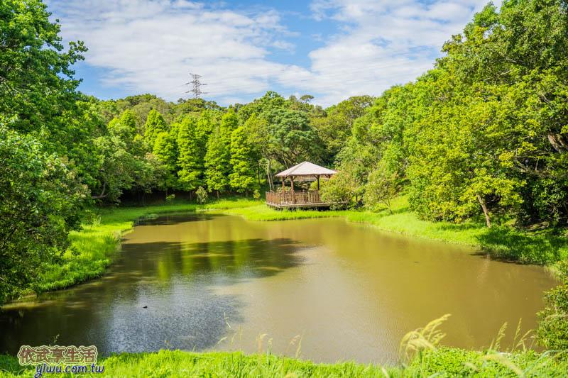 青青草原生態池