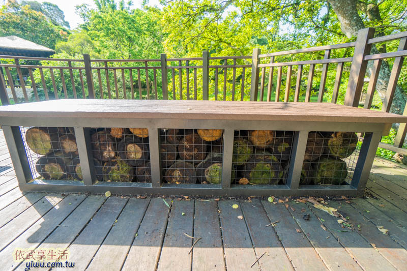 青青草原生態池長凳