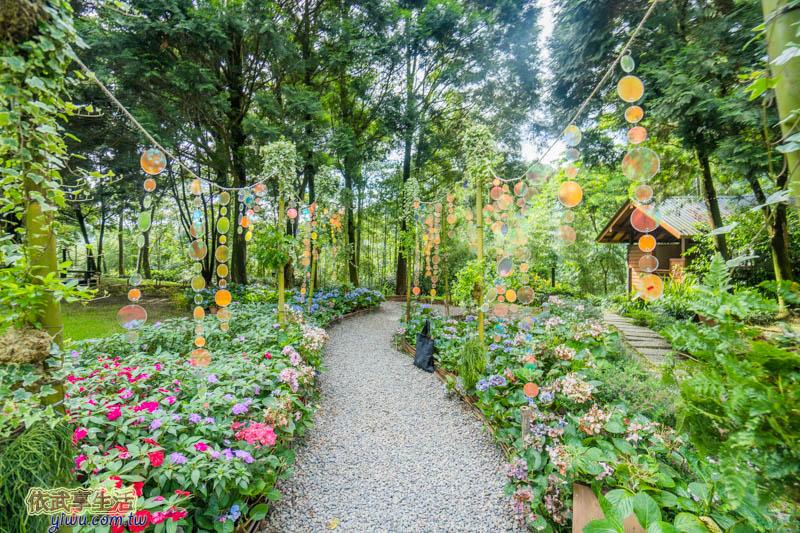 新竹尖石薰衣草森林