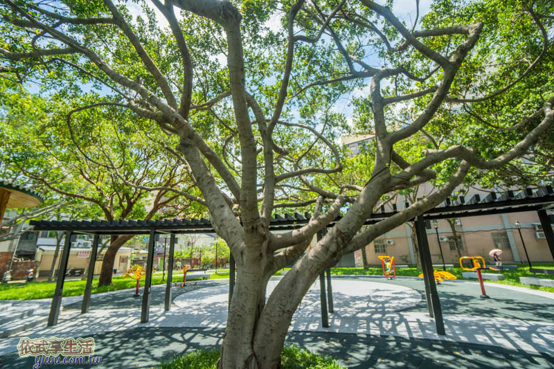 新竹民族公園親子花架長廊