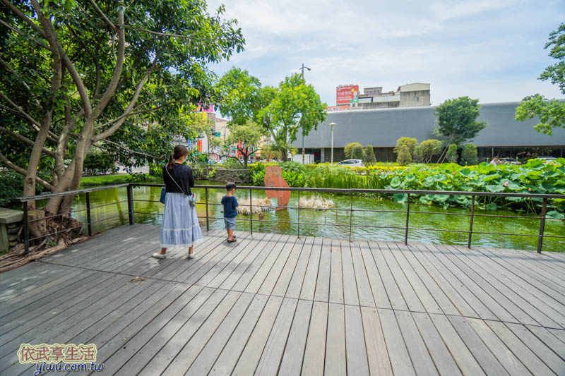 新瓦屋客家文化保存區生態池賞荷