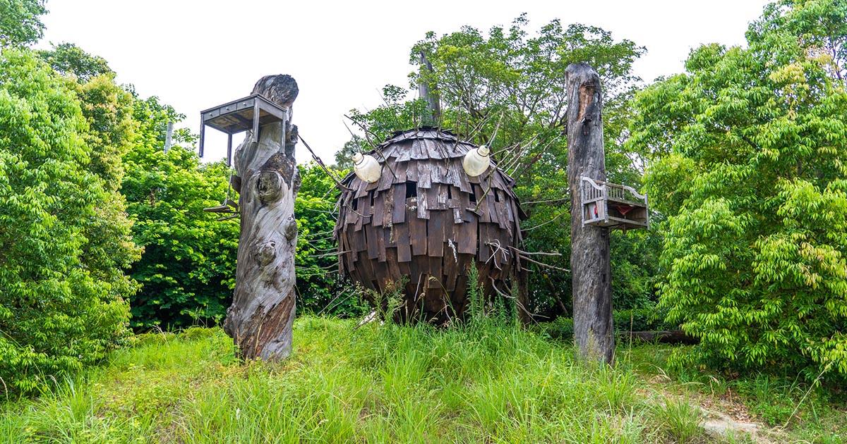 〔新竹寶山景點〕種子星球~漂浮在巨木之間的地景藝術~寶山鄉美拍打卡景點
