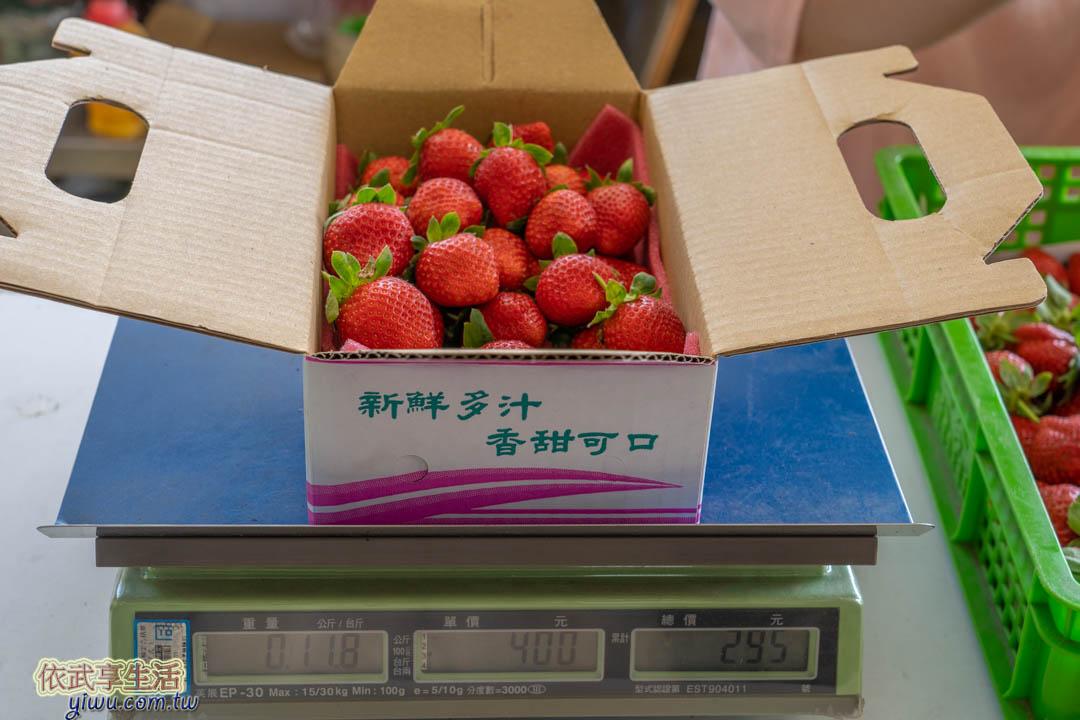 大湖採草莓價格