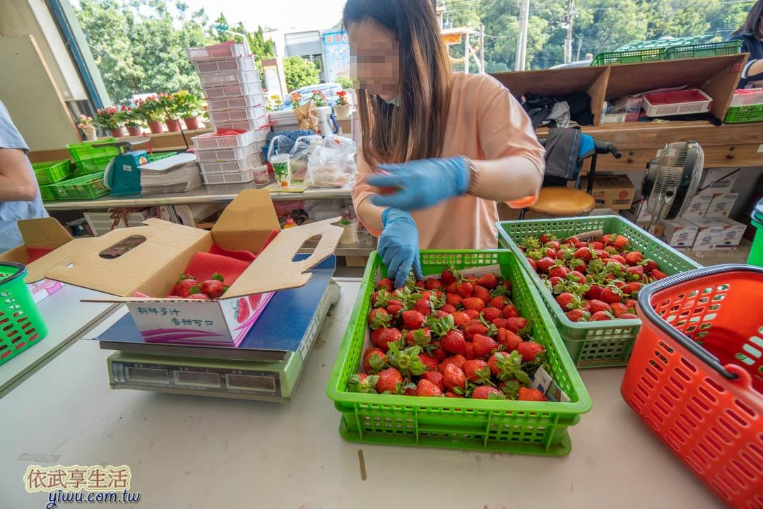 六合草莓休閒農場