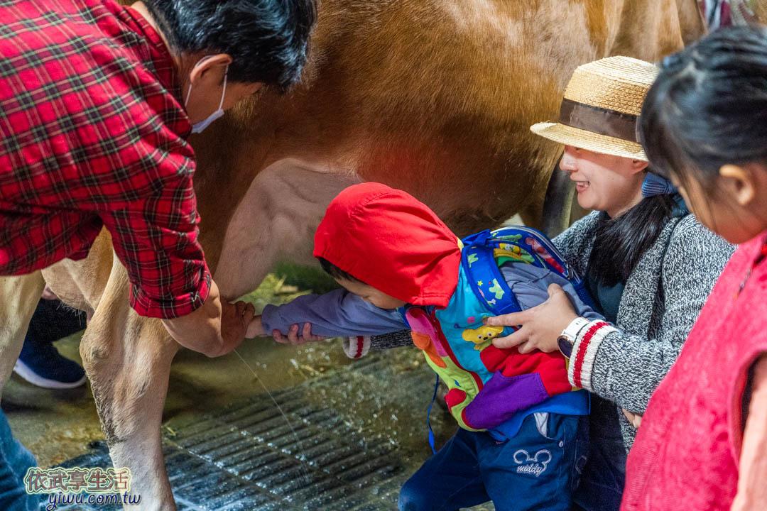 飛牛牧場體驗活動