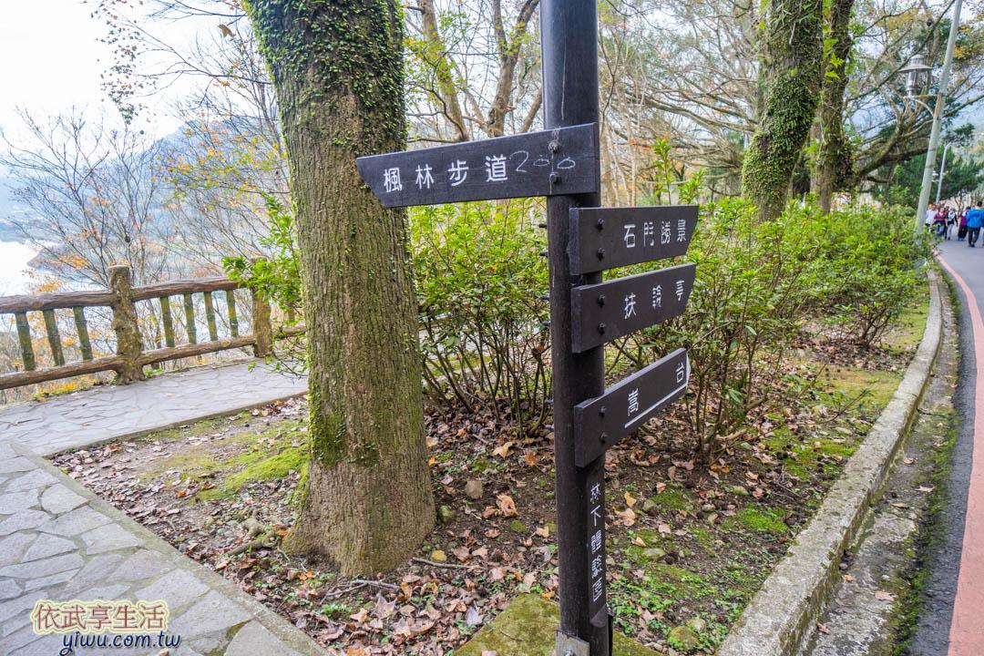 石門水庫楓林步道