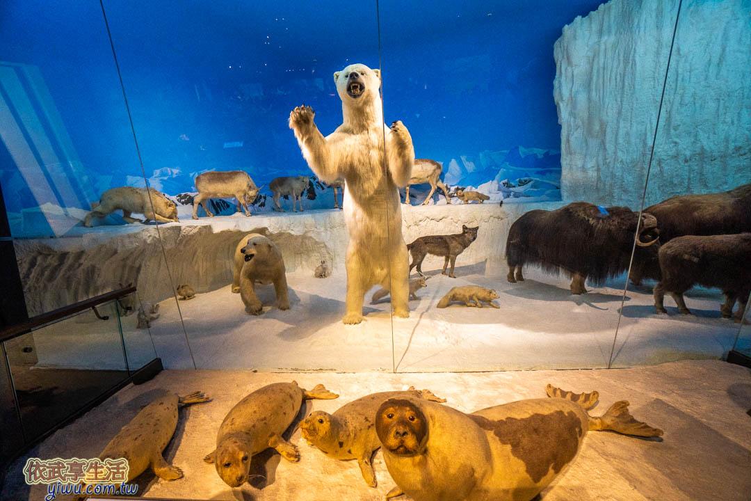 奇美博物館動物廳