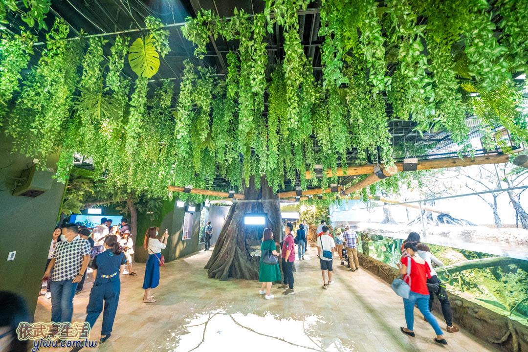 Xpark熱帶雨林區