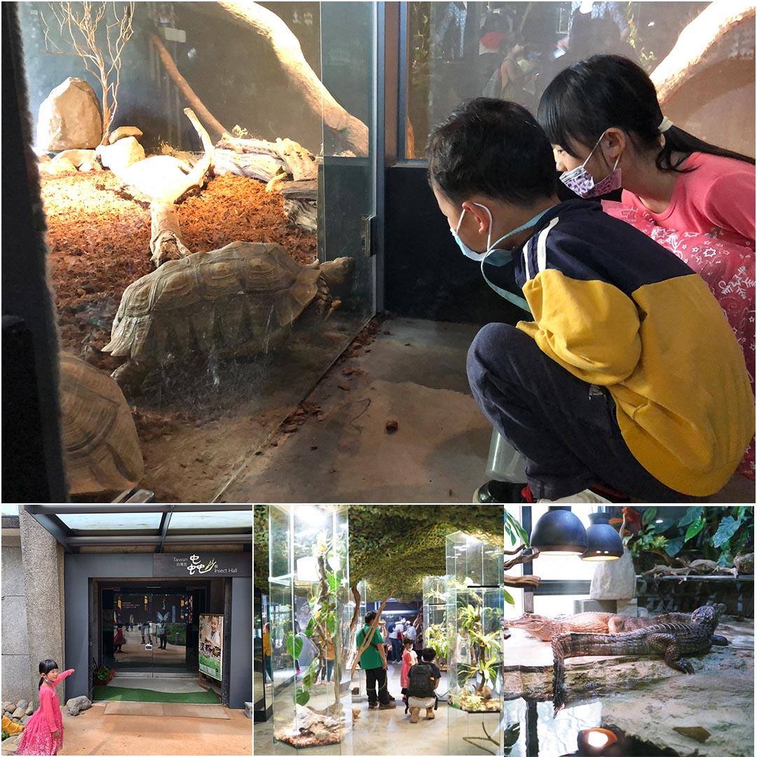 新竹台灣昆蟲館