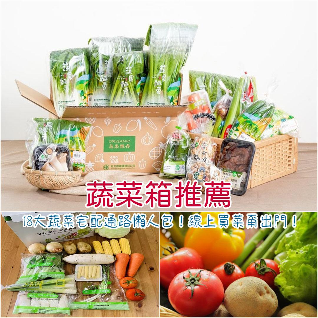 蔬菜箱推薦